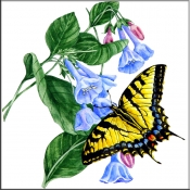 JR-Tiger Swallowtail Butterfly with Flowers - Accent Tile
